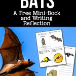 Bats: A FREE Mini-Book and Writing Reflection