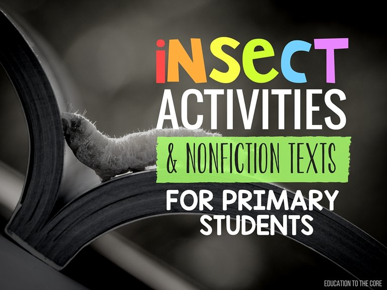 Insect Activities and Non-Fiction Texts for Primary Students