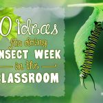 Doing Insect Week in the Classroom